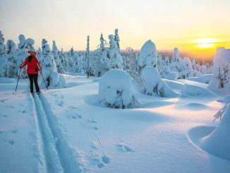 Finland carbon neutral by 2035